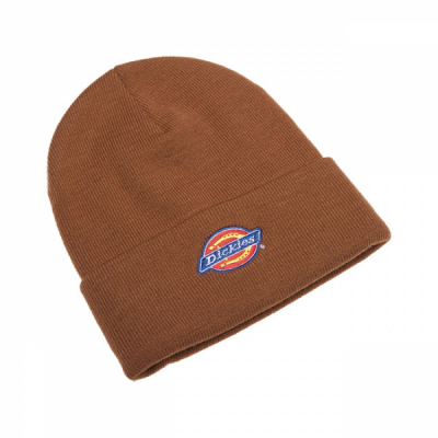 Dickies Colfax Beanie Brown Duck in the group Men / Headwear / Beanies at Sivletto - Skylark AB (08440059BD)