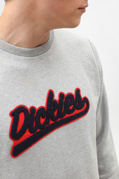 Dickies Campton Sweatshirt in the group Men / Sweaters at Sivletto - Skylark AB (200242)