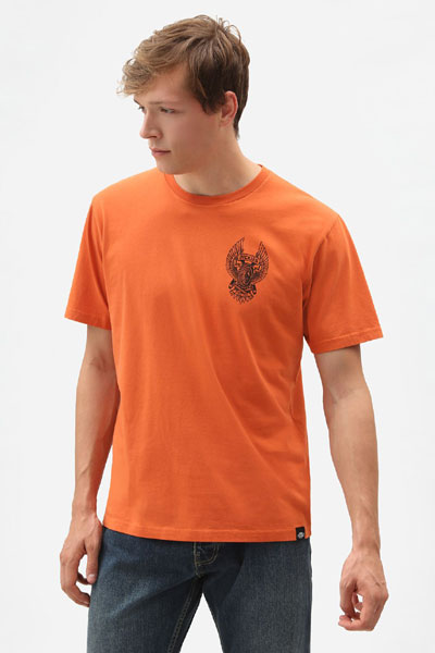 Dickies Symsonia T-Shirt rust in the group Sale! / Men / T-shirts at Sivletto - Skylark AB (210668)