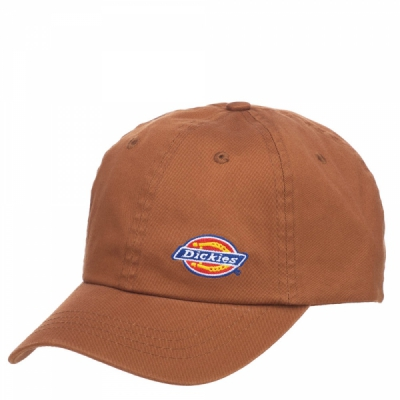 Dickies Willow City cap brown duck in the group Men / Headwear / Trucker/baseball caps at Sivletto - Skylark AB (440036BD)