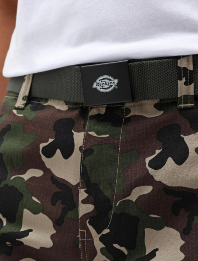 Dickies Orcutt Olive Green Belt in the group Clothes / Accessories at Sivletto - Skylark AB (DK0A4X7EOGX1001)