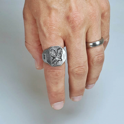 Jernhest Ernie Ring in the group Men / Accessories / Jewelry at Sivletto - Skylark AB (REe19100)