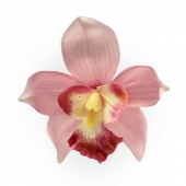 Collectif Orchid hair clip pink