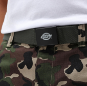 Dickies Orcutt Olive Green Belt