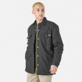 Dickies Lined Duck Shirt Jack Relaxed Black