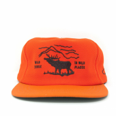 Ampal Creative Wild Places Strapback Safety Orange