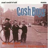 Cosh Boys - We are still juvenile delinquents